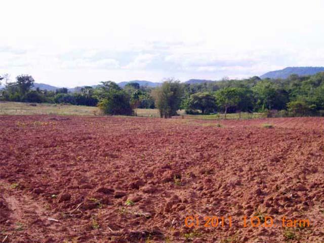 http://kor.iodfarm.com/pic-iod/p20110330-06.jpg